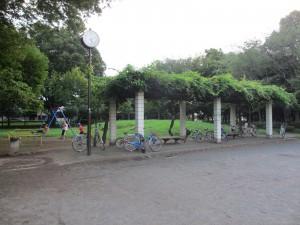 若葉公園全体