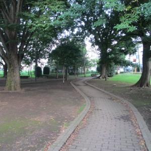 若葉公園小道