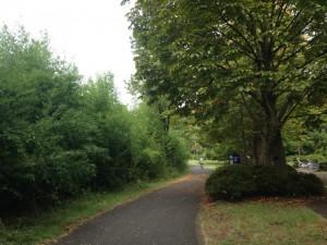 サイクリングロード|昭和記念公園こどもの森