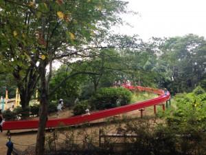 滑り台|昭和記念公園こどもの森