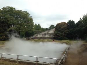 霧の森|昭和記念公園こどもの森