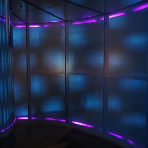 日常でも見られるモアレ現象を示した展示室入口