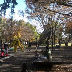 府中の森公園_playground10
