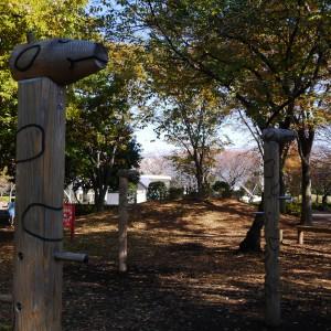 府中の森公園_playground3