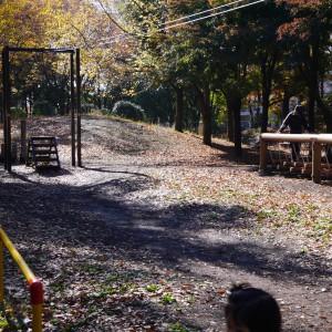 府中の森公園_playground5