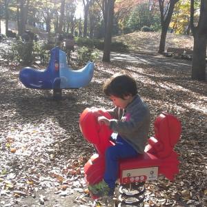 府中の森公園_playground9