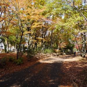 府中の森公園_scene3