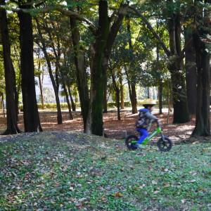 府中の森公園_strider4