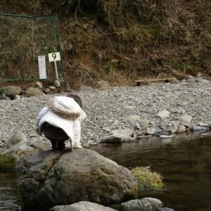 岩を飛び乗り川を渡る娘