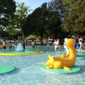 昭和記念公園水遊び広場