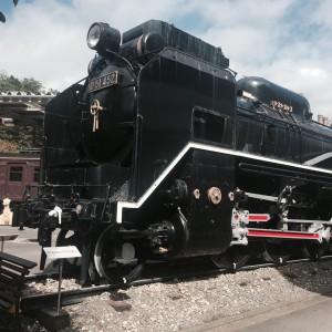 大きなD51型蒸気機関車。昭和公園にありますが、ここのは乗れる触れる!