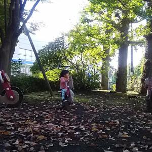 バイク型のスプリング遊具♪