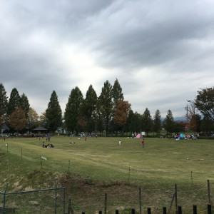 広い芝生エリアでBBQができます