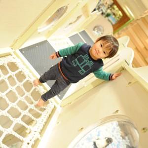 階段を上ると丸い窓から下を覗けるよ。ネットブリッジは2歳の息子も渡れたよ!