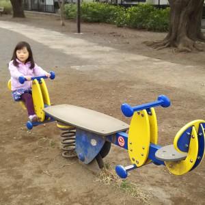 座るだけでなく、真ん中のバランス板に乗って遊べるシーソー。