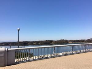 気持ちの良い眺めの堤防
