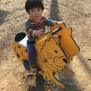 小さい子も遊べる乗り物たち