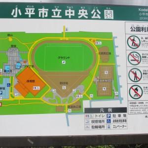 敷地の広い公園