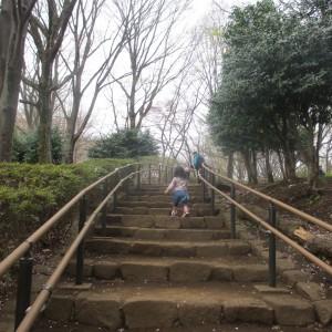 どこに続く階段かな?