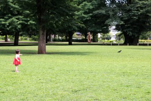 思いっきり走れる芝生の広場★